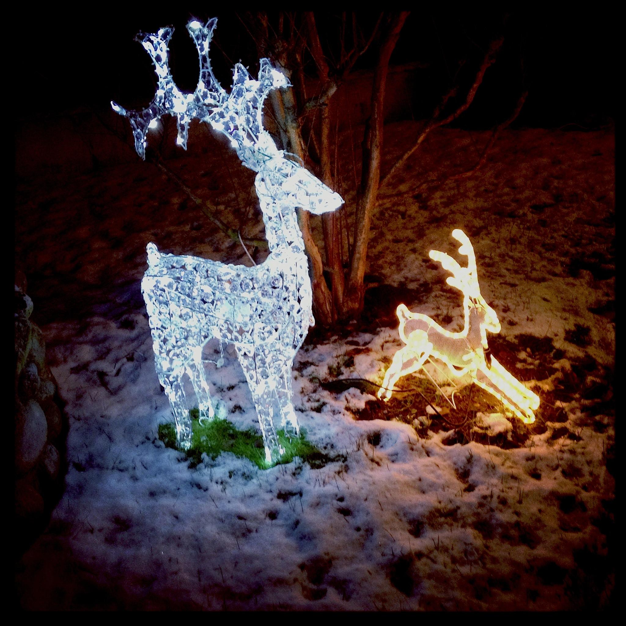 #6A3618 Les Trois Chêne à L'heure Des Décorations De Noël Signé  5435 decorations de noel geneve 2048x2048 px @ aertt.com