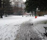 Vos images de Genève sous la neige