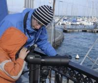 Observer les oiseaux migrateurs, guidé par des spécialistes
