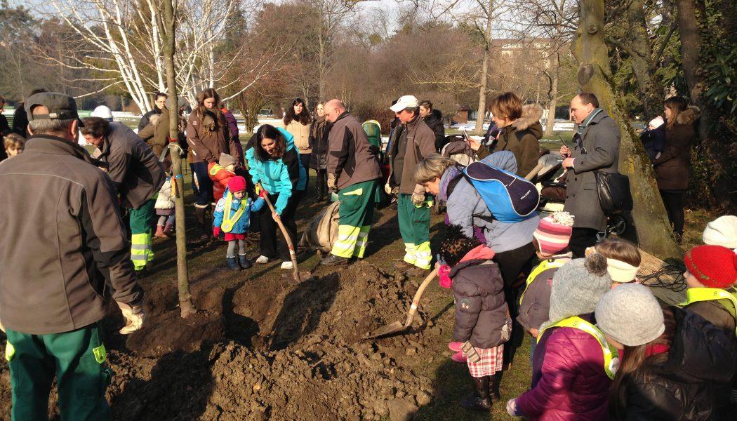 Les enfants de Champel plantent un arbre au Parc Bertrand