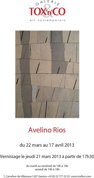 Avelino Rios à la galerie d'art contemporain TOX'n'CO
