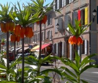A Carouge, les printemps se rencontrent