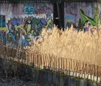 Dernières images de la « Piscine », friche industrielle de la ZIPLO