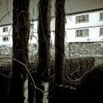 La Cité Jardin Vieusseux, laissée à l'abandon (P. Mahassen)