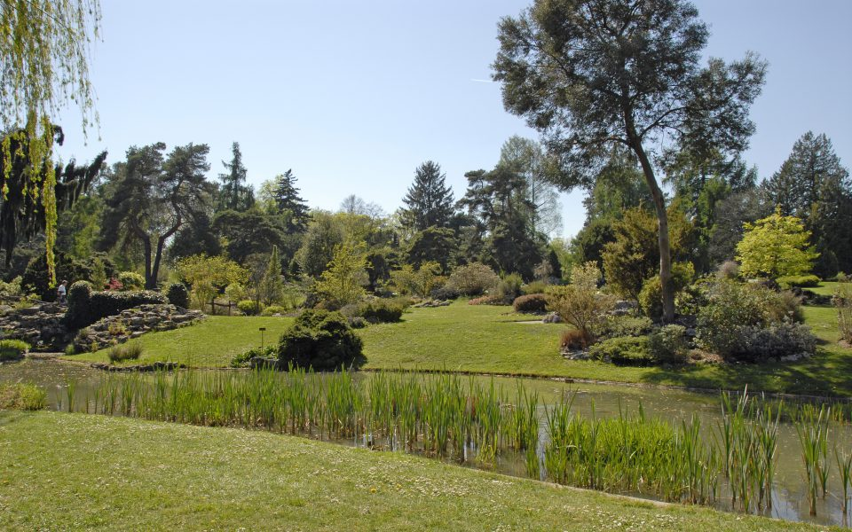Les collections du Jardin botanique de Genève