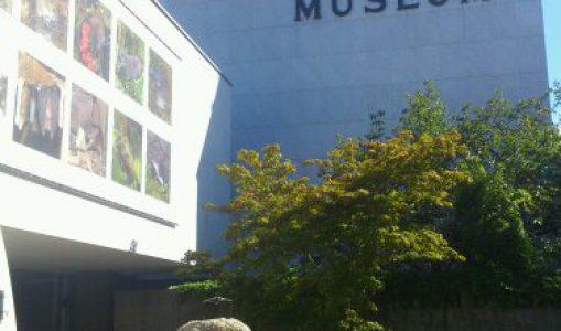 Museum de Genève