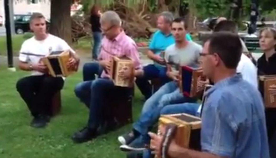 Les accordéons schwyzois ont fait vibrer Onex