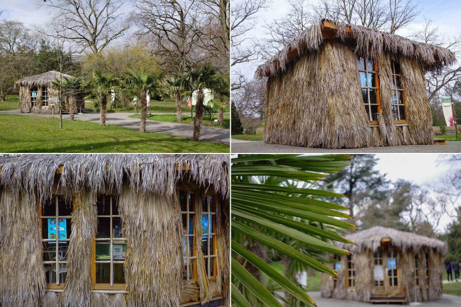 Ambiance estivale au jardin botanique pour l'expo Palmes&Co