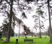 Balade printanière au Parc Alfred Bertrand