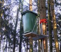 Une mystérieuse poubelle perchée dans un arbre