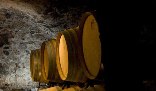 Caves ouvertes au Domaine Dugerdil Dardagny