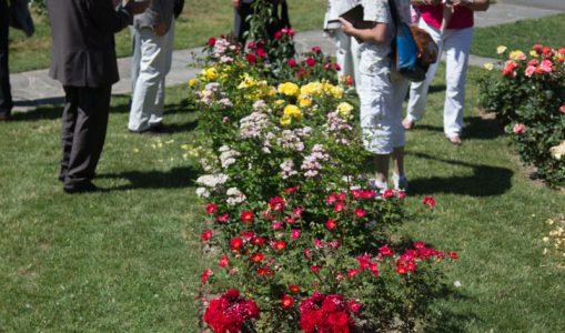 Concours international de Roses nouvelles