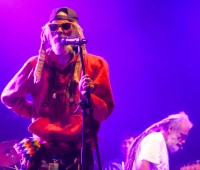 Plein-les-Watts Festival 2014: un mélange réussi de reggae jamaïcain et régional