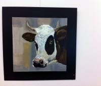 Des portraits de vaches à Bernex