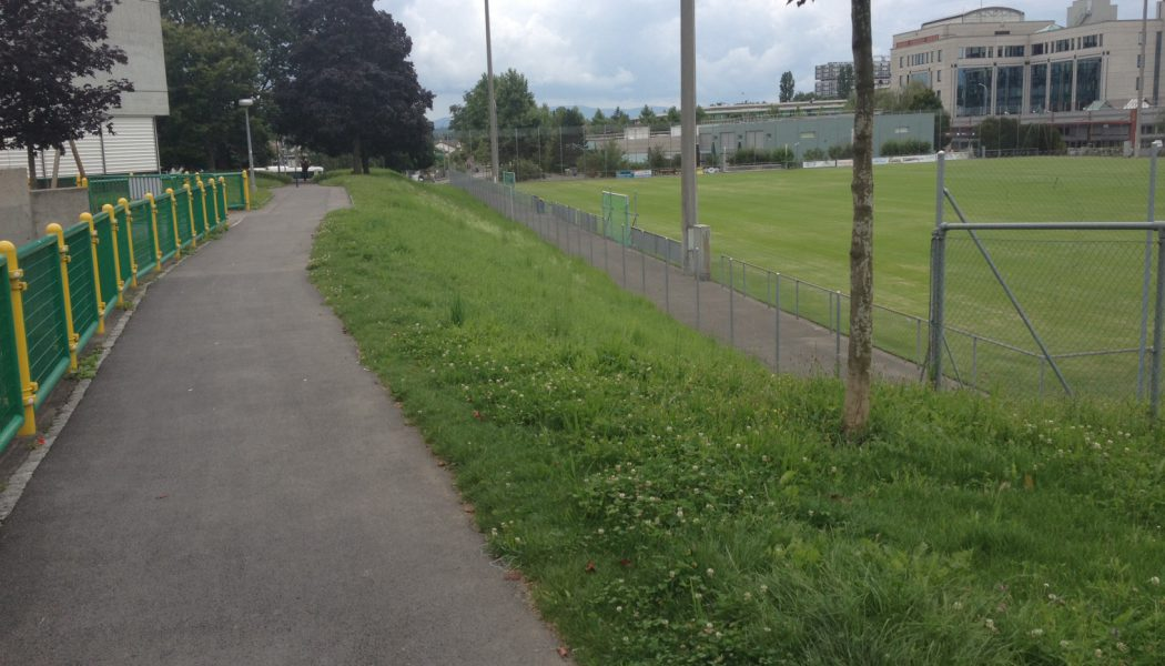 Les Libellules verront fleurir un nouveau parc