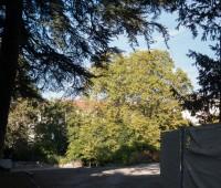 Echange villa du XIXe contre deux tours XXL