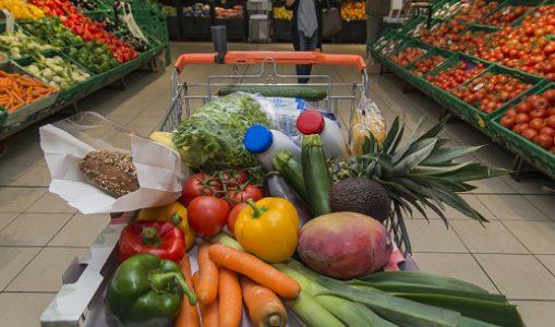 Visites guidées d'un supermarché par une diététicienne !