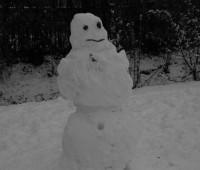 Première neige de l'hiver.