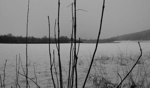 Neige à Verbois