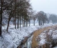Plaine de la haute Seymaz sous un manteau hivernal