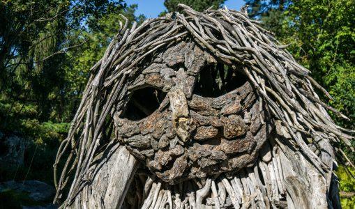 Les étranges bestioles du Jardin Botanique de Genève