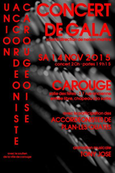 CONCERT DE GALA d'accordéon le 14 novembre à Carouge!