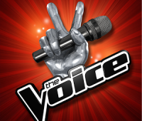 Casting The Voice France
