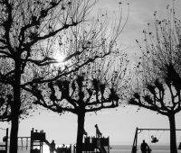 Ombres chinoise du côté de la plage d'Hermance