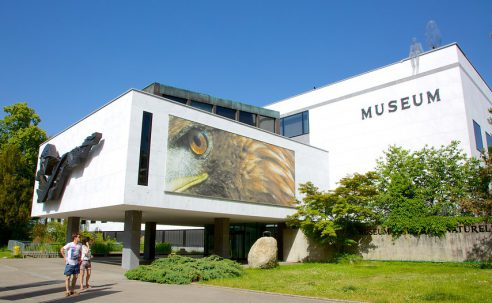 Le Museum d'histoire naturelle à l'heure du Speed dating