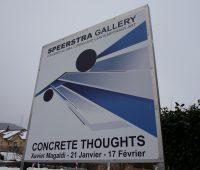 Expo de l'artiste genevois Xavier Magaldi