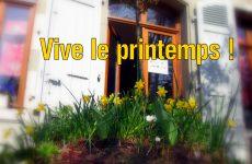 Quand le printemps tapissait de fleurs la terrasse du Pavillon Louis XVI