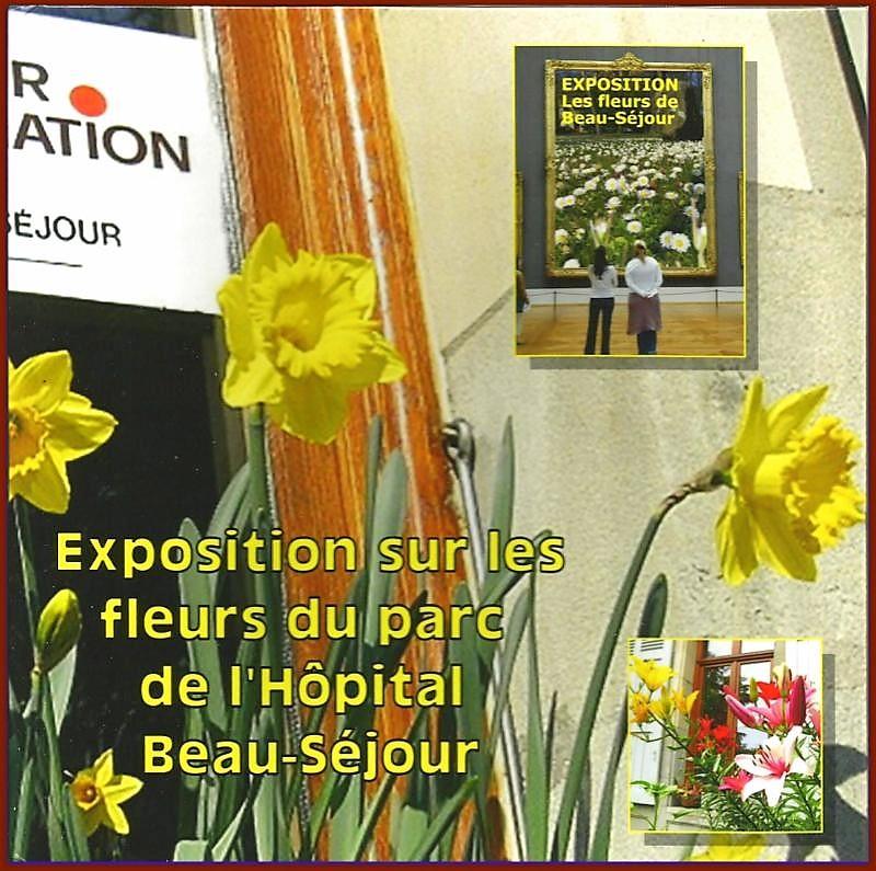 L'album-photos sur les fleurs de Beau-Séjour