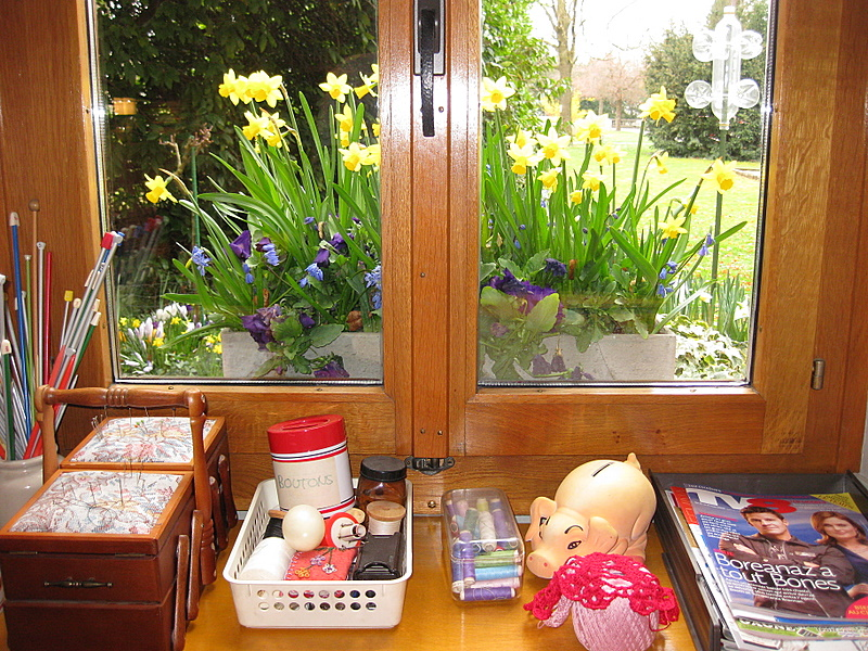 Bacs à fleurs sur les rebords de fenêtre