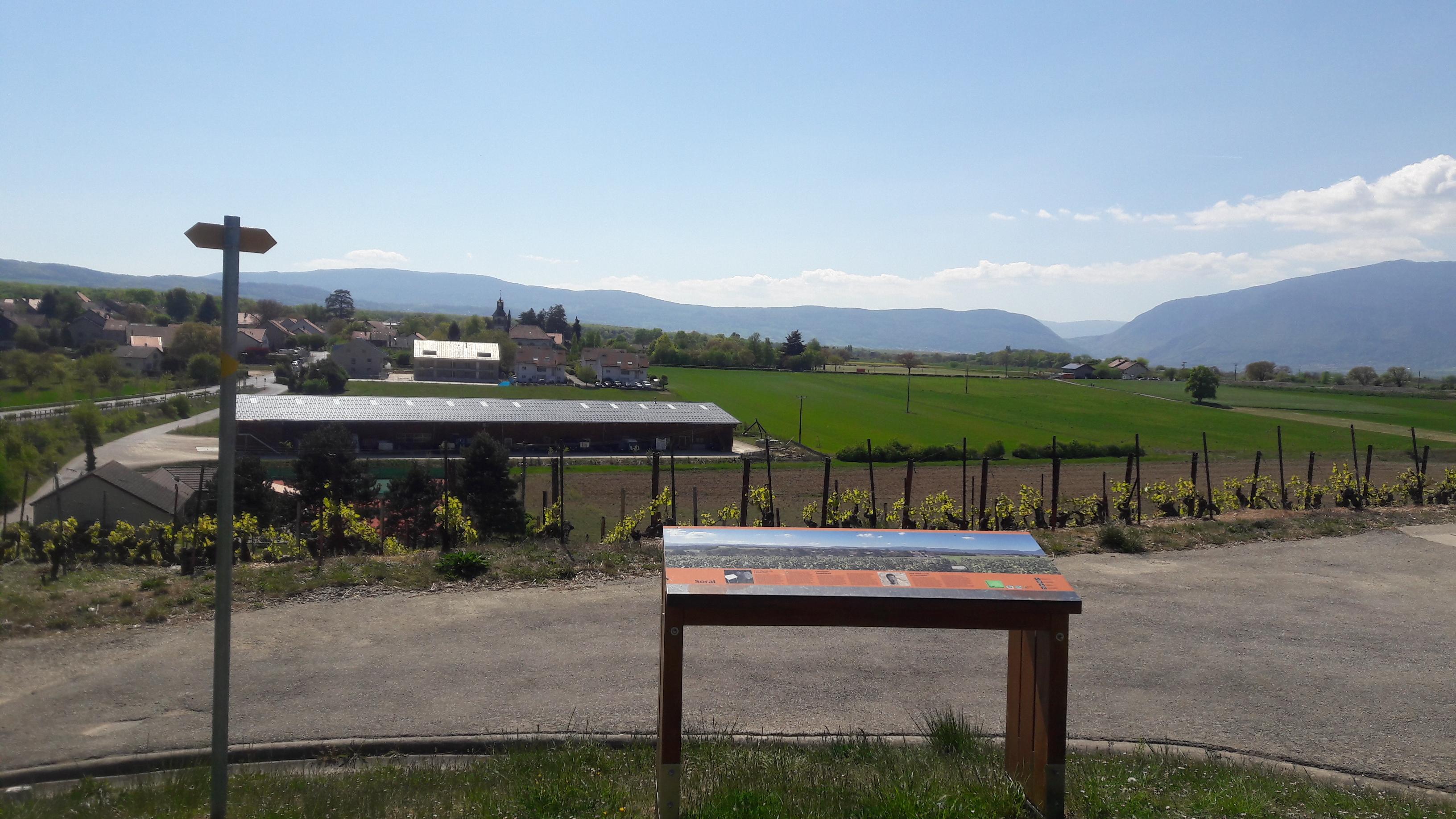 Le panorama près de Laconnex