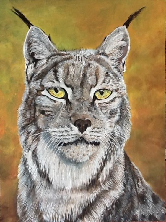 Portrait de lynx II  Huile sur bois 40 x 30 cm Gisèle Bryers