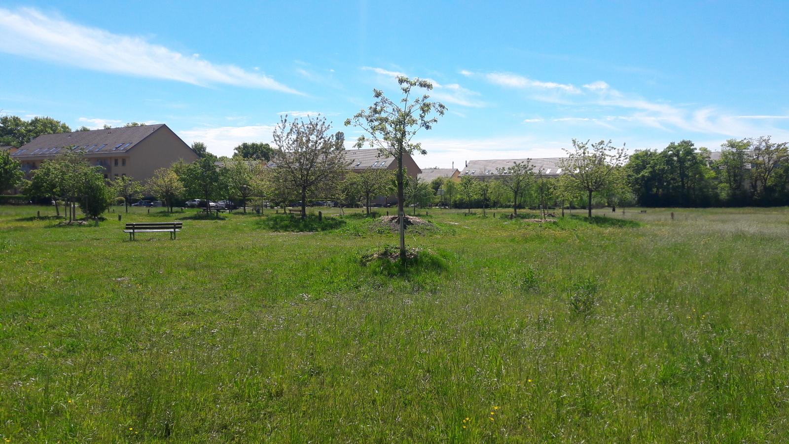 Parc de la Chênaie