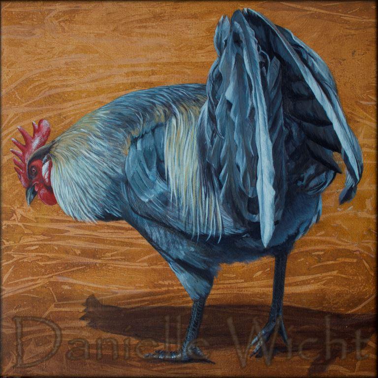 Coq gris  Acrylique sur toile de lin 42 x 42 cm  Danielle Wicht