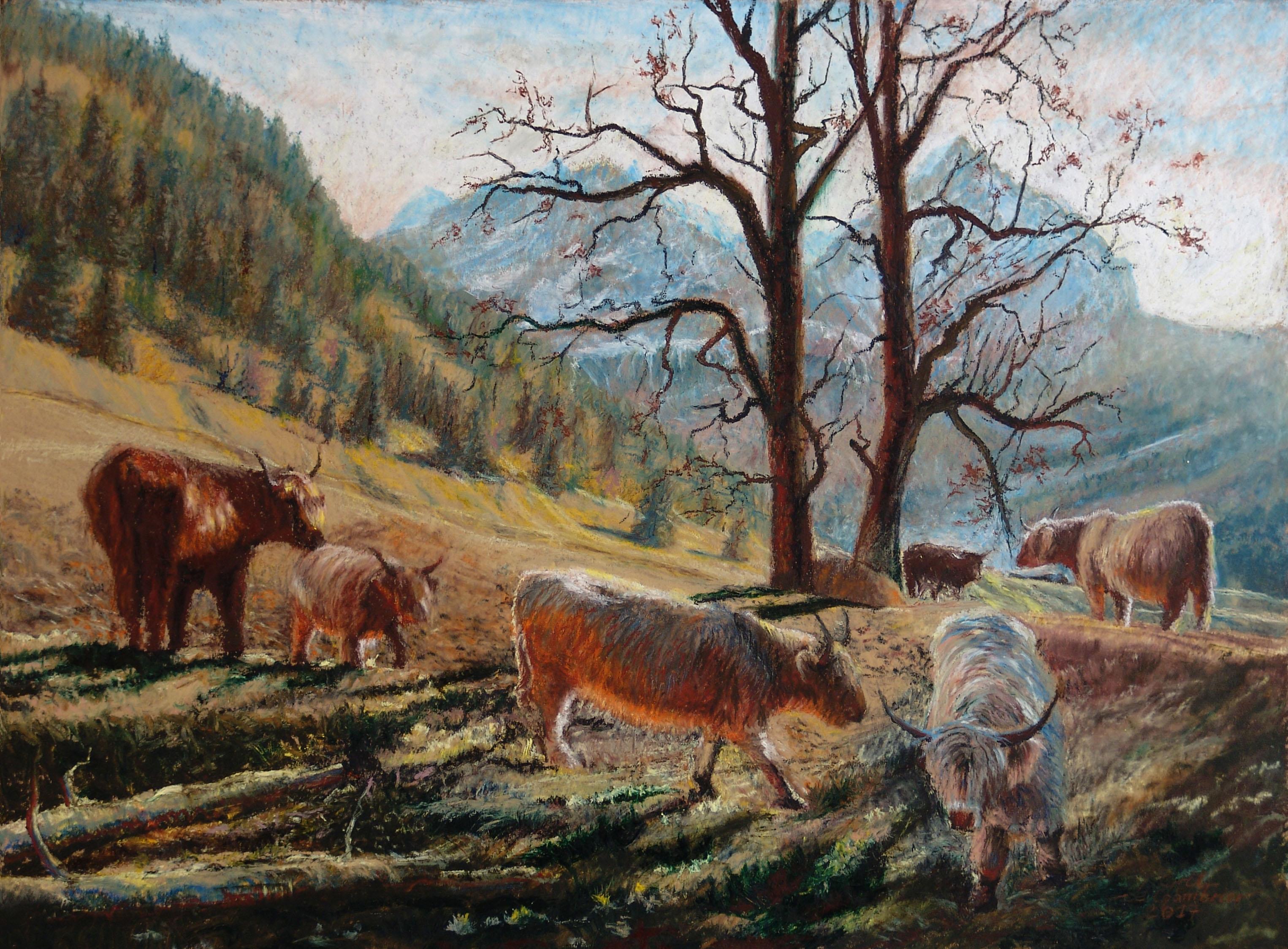 Vaches Highland vers Adelboden Papier marouflé sur panneau 60 x 80 cm Cyril de Chambrier