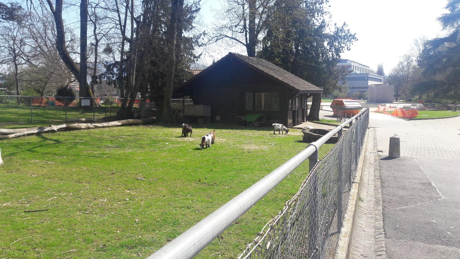 Parc Robinson de Balexert