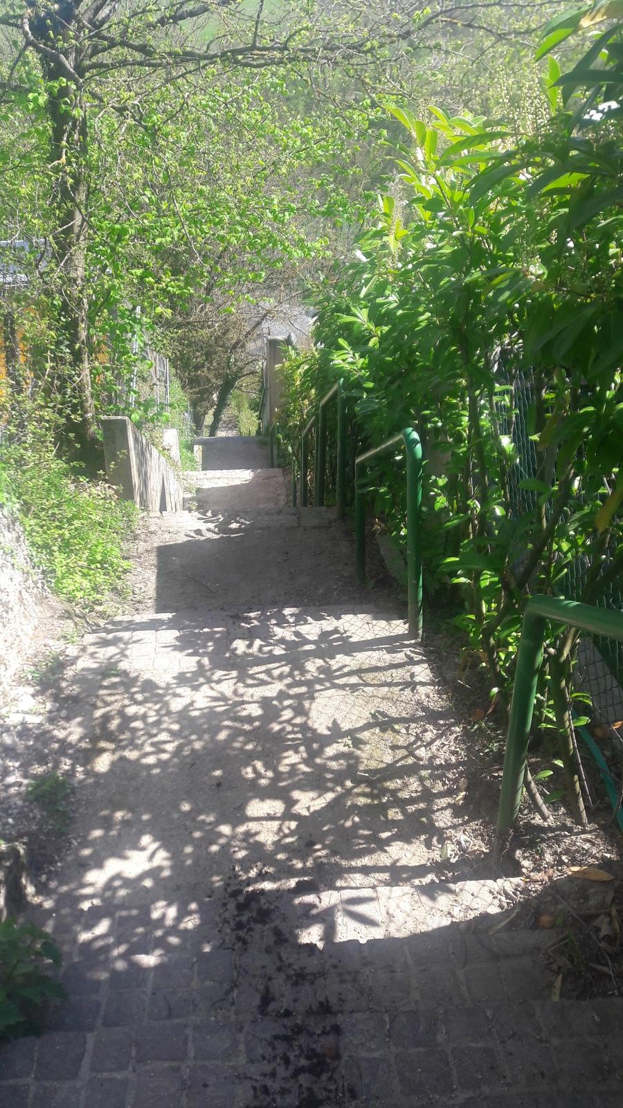 Escaliers vers le Rhône