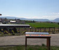 Promenade «Un panorama dans les vignes»