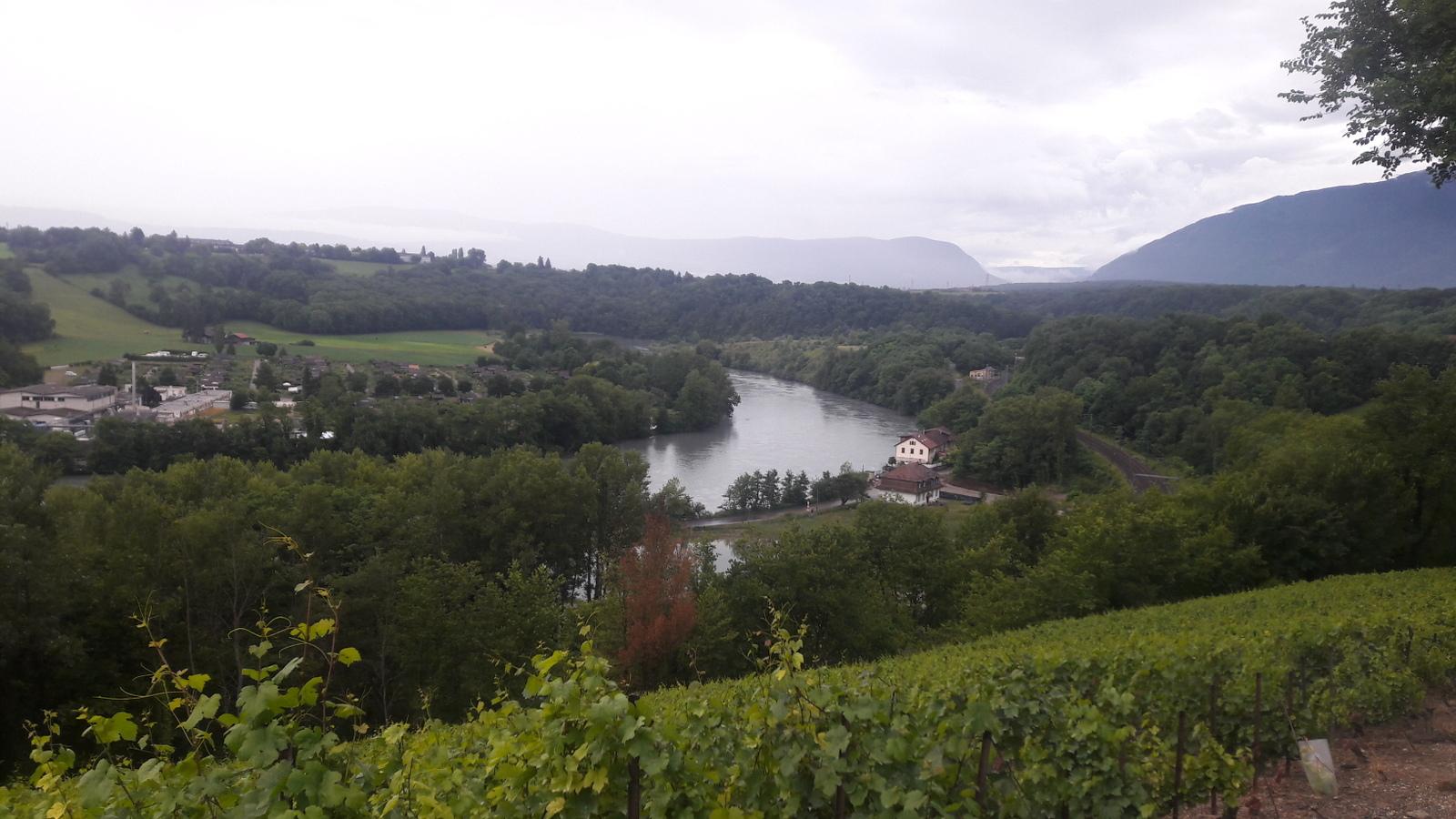 Coude du Rhône au-delà de La Plaine