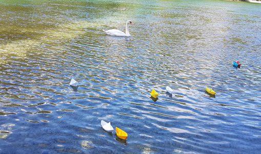 Des petits bateaux sur le Rhône pour la prévention du suicide