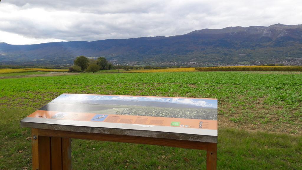 Un panorama sur le Jura
