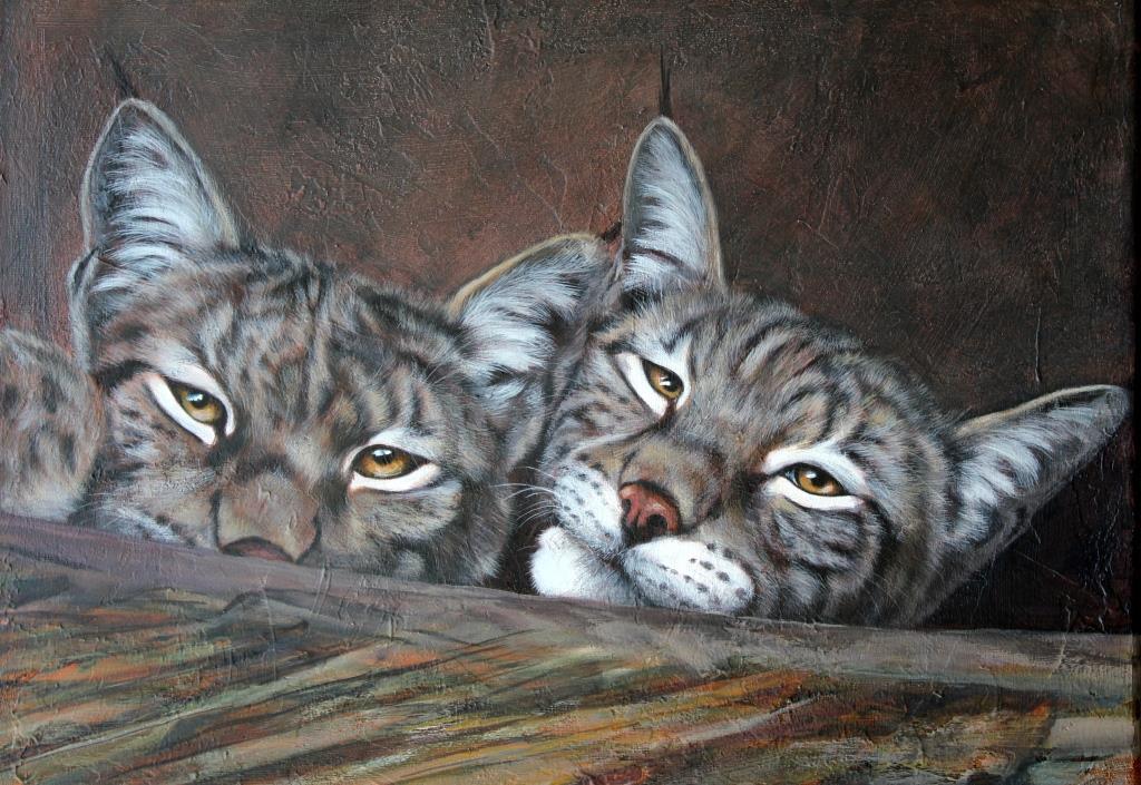 Duo de lynx Acrylique sur toile 30 x 40 cm (encadré 40 x 50 cm) Danielle Wicht