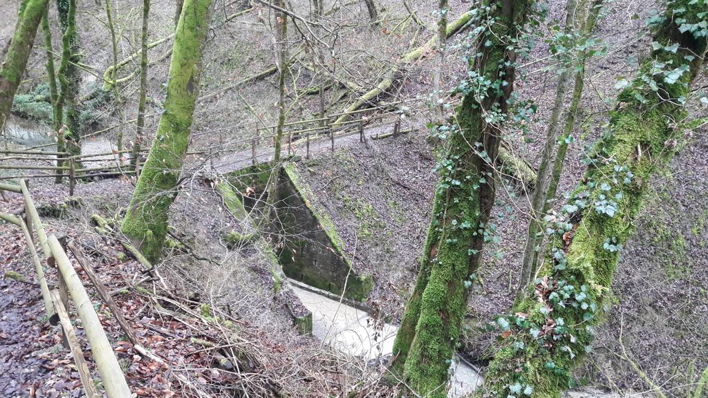 Pont piéton sur le Nant des Crues entre Avully et Cartigny