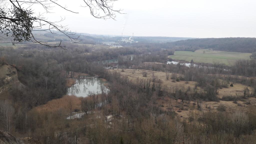 Vue sur la réserve du Moulin de Vert