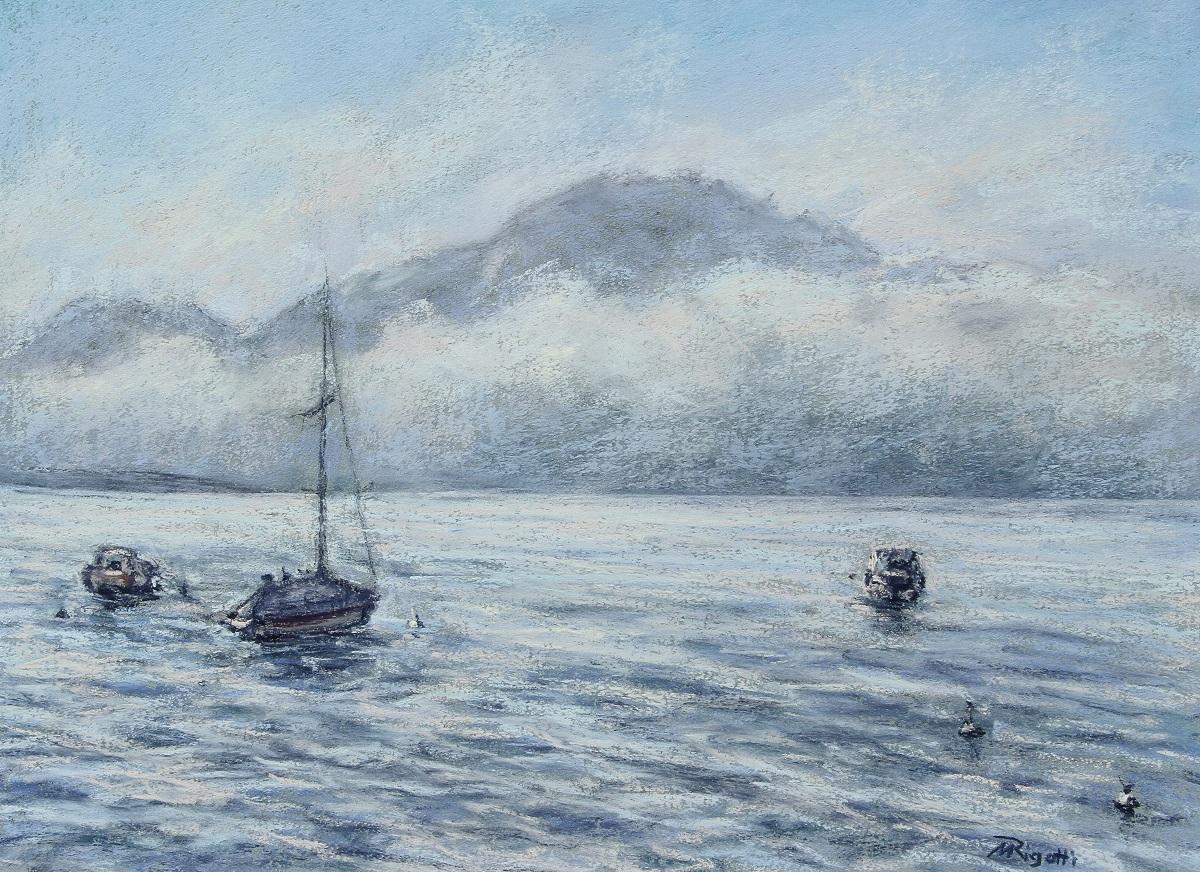 Hibernation  Pastel sec sur papier 30 x 40 cm (encadré 40 x 50 cm) Maria Rigotti