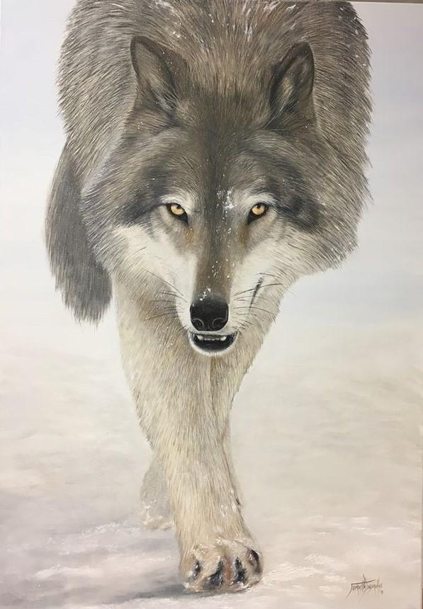 Loup gris Huile sur toile 100 x 70 cm Mireille Desroches