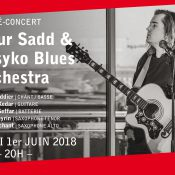 Docteur Sadd & The Psyko Blues Orchestra